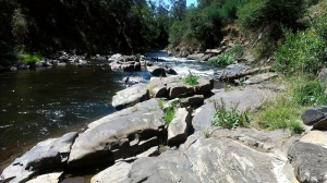 The river along the Mount Beauty gorge walk