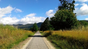 A long straight stretch of the Murray to Mountains Rail Trail