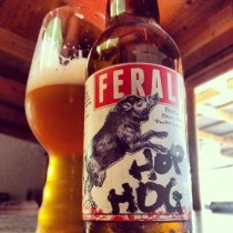 A glass and bottle of Feral Brewing's Hop Hog